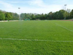 Read more about the article Kreative Ideen für die Stadt Freising: Sportentwicklungsplanung im Kulturausschuss vorgestellt